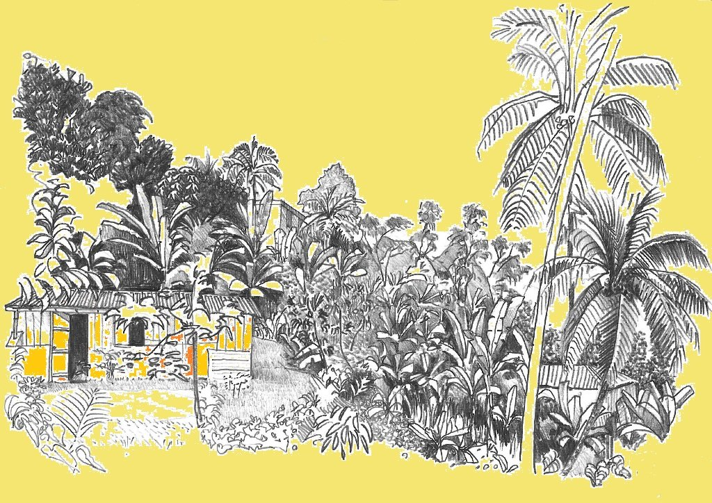 Que devez-vous savoir d'autre ? dans MES AIEULS MARTINIQUAIS paysage-crayon-jaune-02